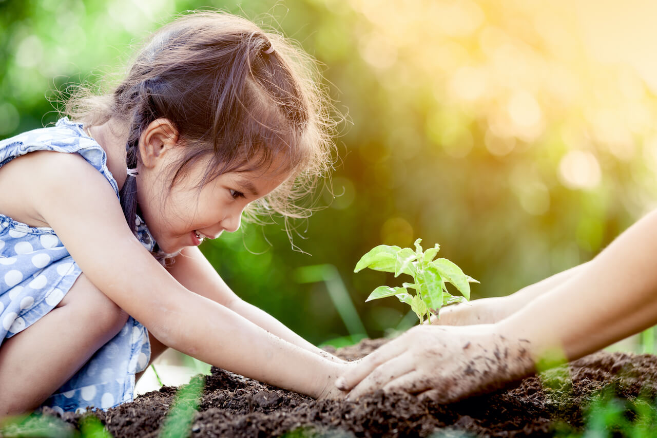 Young girl planting a sapling